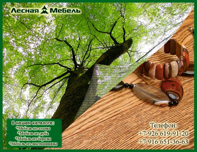 Мебель из ясеня - что нужно знать о ней! Каталог мебели из дерева только у нас!